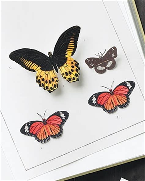 12 best images about butterflies on pinterest scrapbook