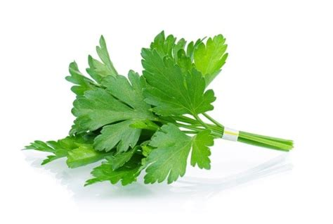 Cilantro Tea Detox by Top 6 Ways To Detox Heavy Metals And Environmental