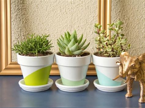 Best Plants For Office With No Windows Ideas Decora 231 227 O Plantasblog Da Propriet 225 Riodireto