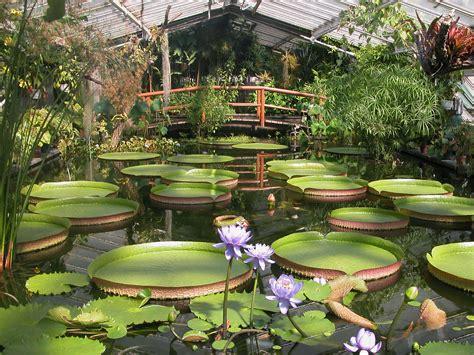 Botanischer Garten Berlin Garden Eintrittspreise by Sanierung Des Victoriahauses Und Des Nahw 228 Rmenetzes Bgbm