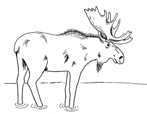 coloring pages alaska animals vorlagen zum ausmalen malvorlagen elch ausmalbilder 2