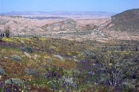 anzo borrego anza borrego desert state park 174