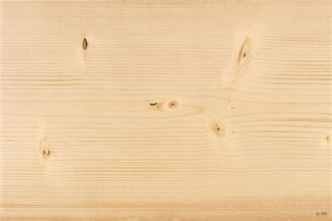 Fichte Eigenschaften by Holzarten Erkennen 220 Bersicht Mit 33 Weich Und