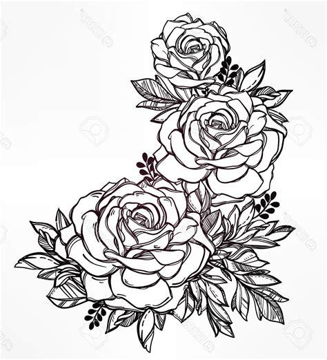 imagenes de rosas hermosas para dibujar im 225 genes y dibujos para colorear de rosas imagenes de