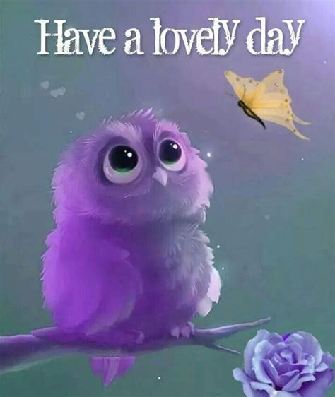 lovely day pictures   images