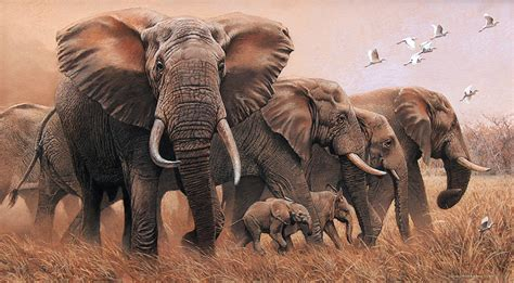 painting elephant johan hoekstra wildlife collection the best of