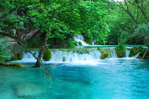 cascadas con 225 rboles imagui fotofrontera cascada de agua turquesa con flores hermosas