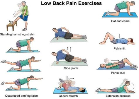 principle of physical therapy for back treatment