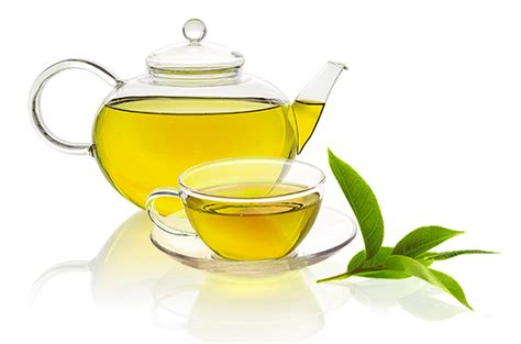 Teh Hijau Cup the nootropic benefits effects of green tea