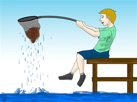 Catch A how to catch shrimp 11 steps with pictures wikihow