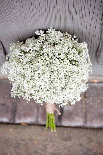 Wedding Bouquet Baby S Breath by Baby S Breath Cline