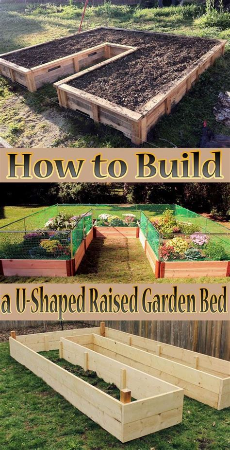 tips   build   shaped raised garden bed creating