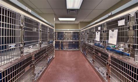 Design Lab Okeechobee | okeechobee veterinary hospital cages www