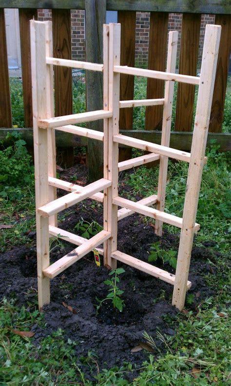 diy arbor trellis diy tomato trellis gardening pinterest