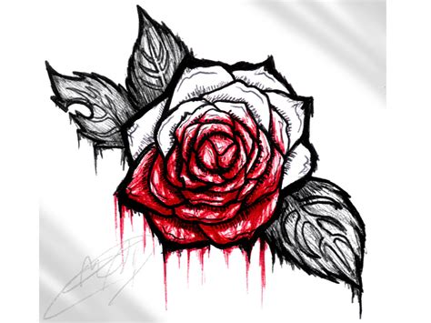 bleeding roses tattoos bleeding pencil and in color