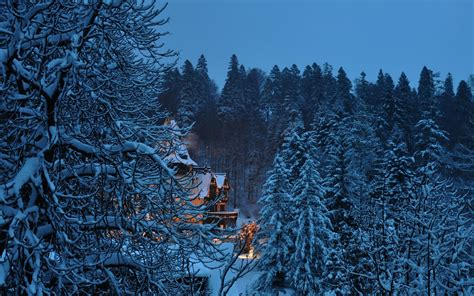 wallpaper abyss winter peles castle full hd wallpaper and background image