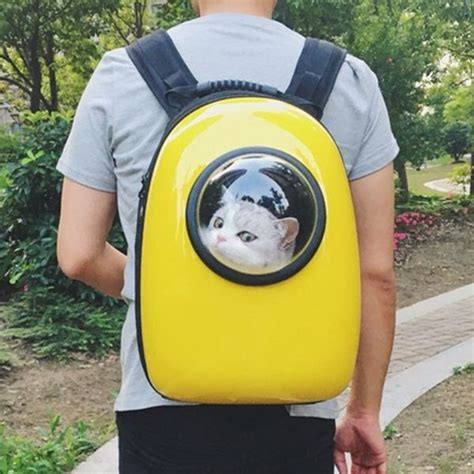 capsule cat carrier backpack let your cat travel like an astronaut made marvels cat