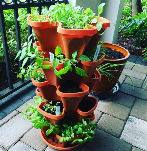 buy a planter 5 tier strawberry planter