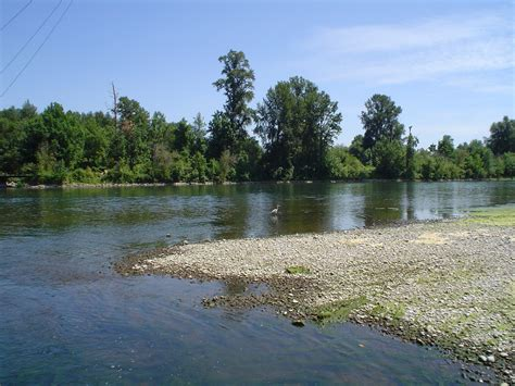 Willamette Search File Crane In Willamette River Marion County Jpg