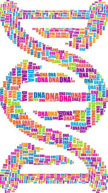vector graphic dna deoxyribonucleic acid