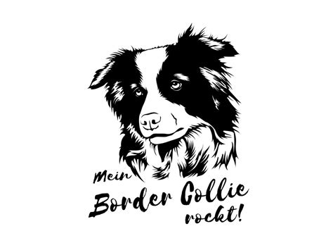Aufkleber Auto Hunderassen by Hunderasse Aufkleber Border Collie Tierisch Tolle Geschenke