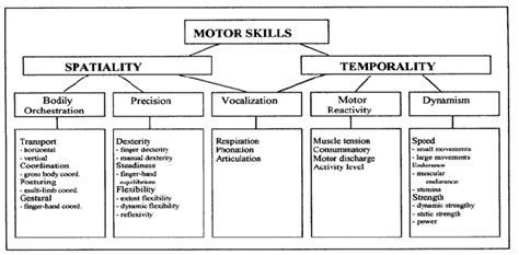 motor skills test adults jte v14n1 defining and measuring technical thinking