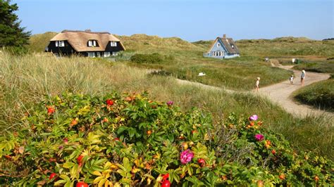 Find In Denmark Homes In Denmark Find And Book Cottages