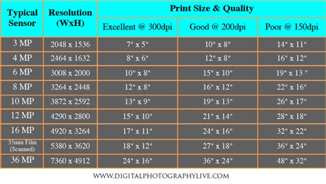 mega pixel megapixels vs print size how big can you print