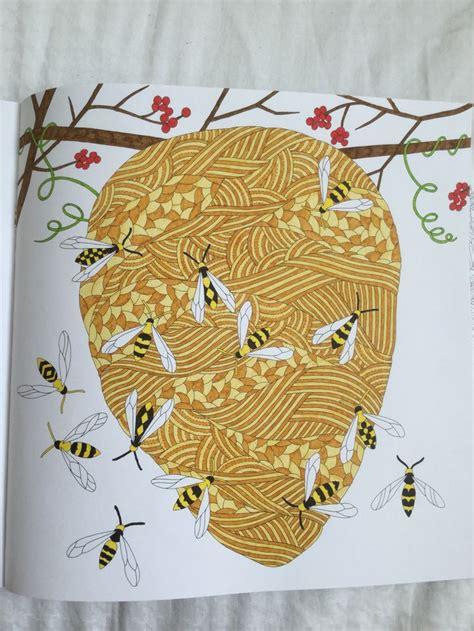 libro millie marottas wild savannah wasp nest wild savannah book millie marotta millie marotta savannah wasp
