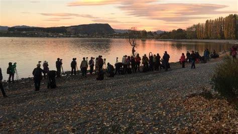 New Zealand Landscape Sts Issue 1 world in new zealand that wanaka tree wanaka stuff co nz