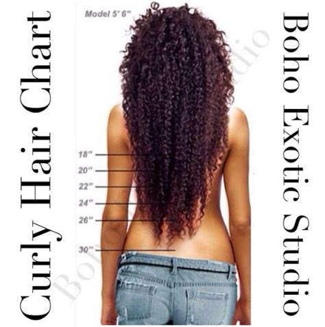 hair length chart hair length chart kinky hair google search natural