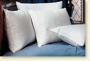 down pillow hilton to home hotel collection pacific coast 174 touch of down 174 standard pillow set 2