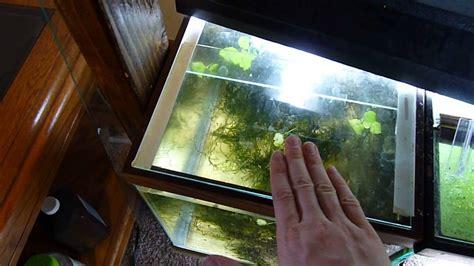 aquarium hood design diy diy aquarium glass lid youtube