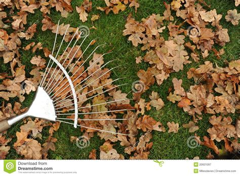 Landscape Rake Leaves Rake And Leaves Royalty Free Stock Photography Image