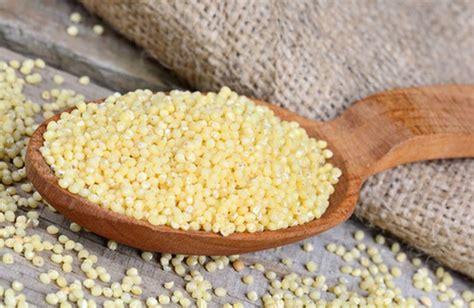 miglio come cucinarlo miglio un cereale energizzante cure naturali it