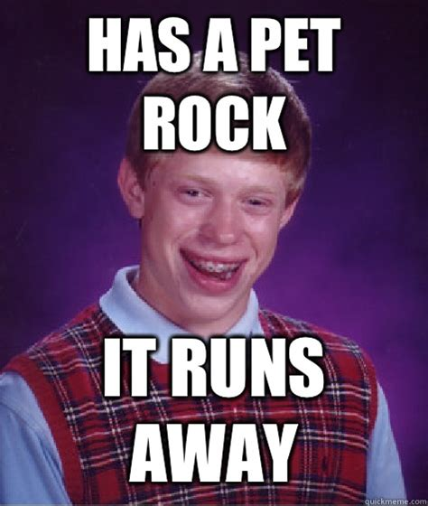 Pet Rock Meme - has a pet rock it runs away bad luck brian