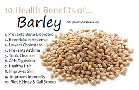 whole grains meaning in urdu health benefits of barley