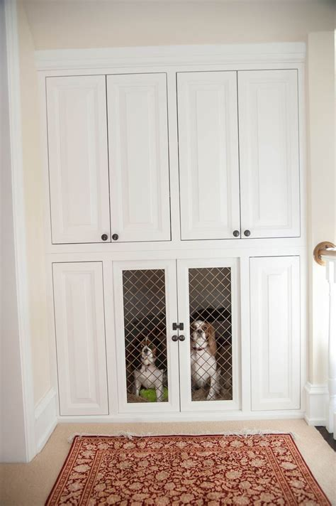 built in kennel custom built in kennel ideas for the new house