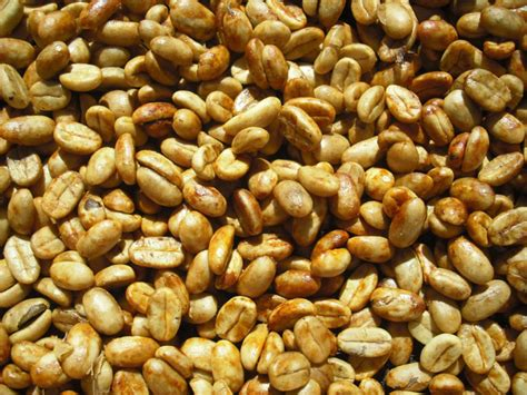 Flores Bajawa Arabica Roasted Bean 2 flores research project may 2011