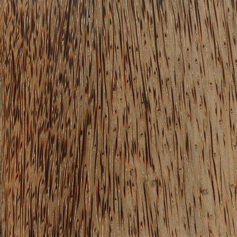 Hardwood Anatomy The Wood Database
