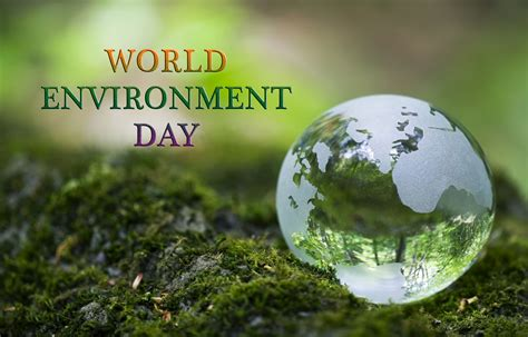 environment day world environment day hd wallpaper