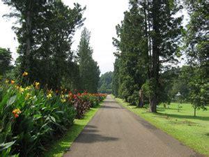 Bajigur Bogor tour bogor puncak taman safari 04h f a r n a z tours n