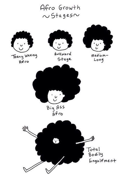 stages of natural hair afro stages natural hair pinterest afro medium long