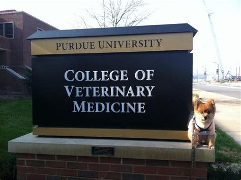 Mba Veterinary Medicine by College Purdue College Veterinary