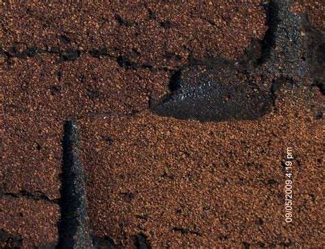 load shingles to roof free load how to fix cracked shingles panelgame