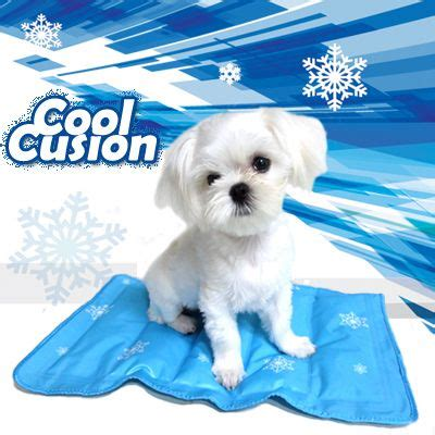 cooling mat for dogs cooling cushion bed pad gel mat for pet cat cool mat worldwide