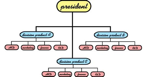 membuat struktur organisasi sederhana blog tugas organisasi lini dan fungsional