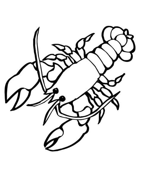 cartoon black and white lobster clipart best