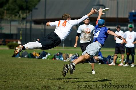 best layout ultimate frisbee dominator friday have you ever wrestled a goat