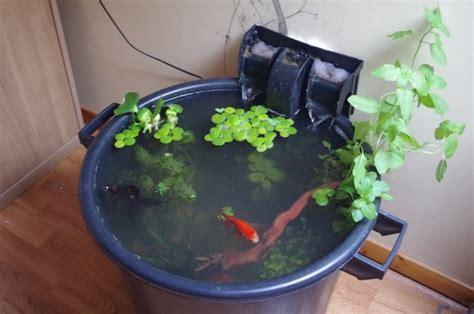 mini bassin d int 233 rieur